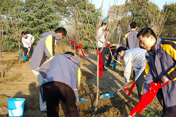 SDLG organizes Tree-planting Day activity